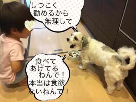 fc2blog_20180925155740181.jpg