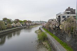 宇都宮・栃木・2015・4・19・15時19分・300px・フォトック