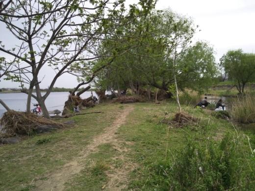 二ヶ領宿河原堰釣り (6)