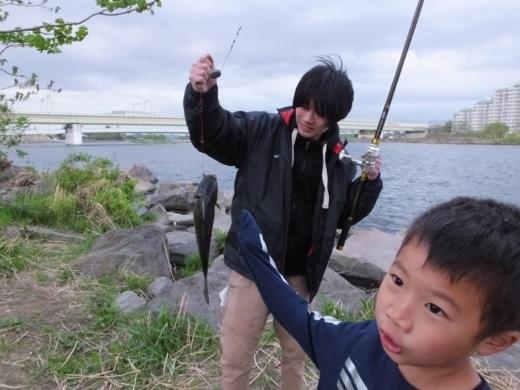 二ヶ領宿河原堰釣り (28)