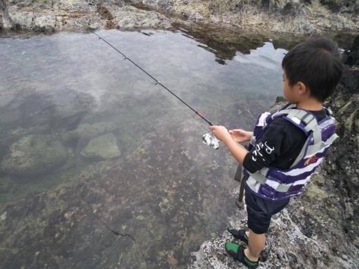 荒崎公園で雑魚釣り (6)