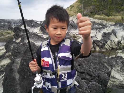 荒崎公園で雑魚釣り (10)