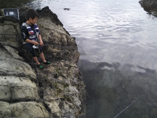 荒崎公園で雑魚釣り (15)