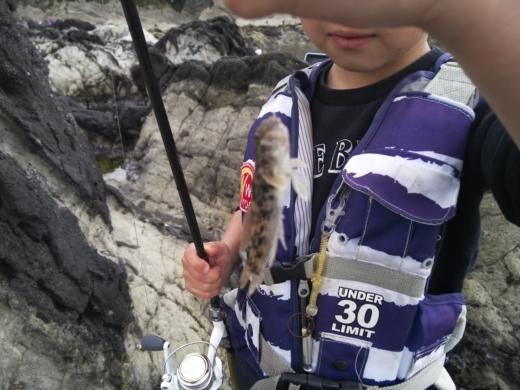 荒崎公園で雑魚釣り (16)