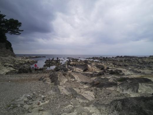 荒崎公園で雑魚釣り (17)