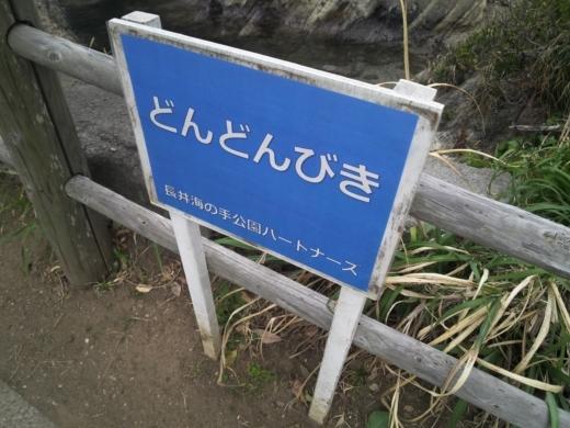 荒崎公園で雑魚釣り (22)