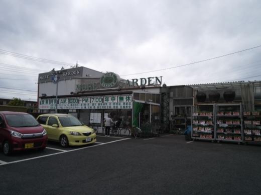 モアガーデン (2)