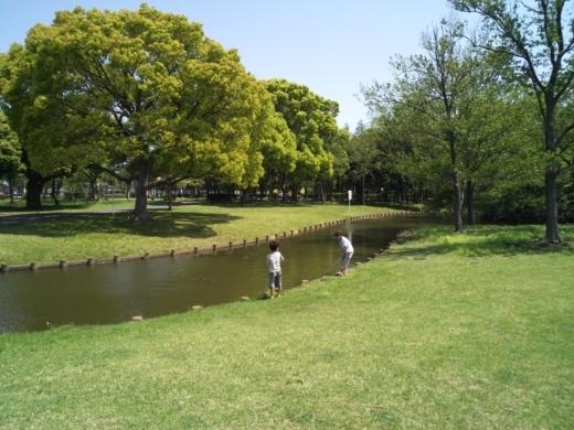 三郷公園 (7)