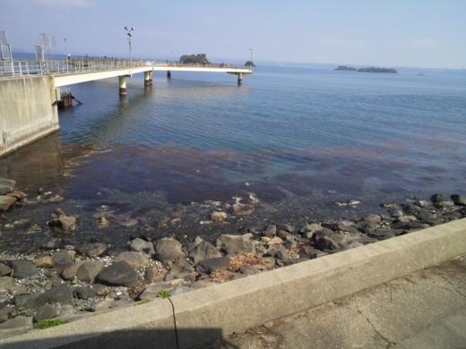 のとじま水族館海づりセンター (4)