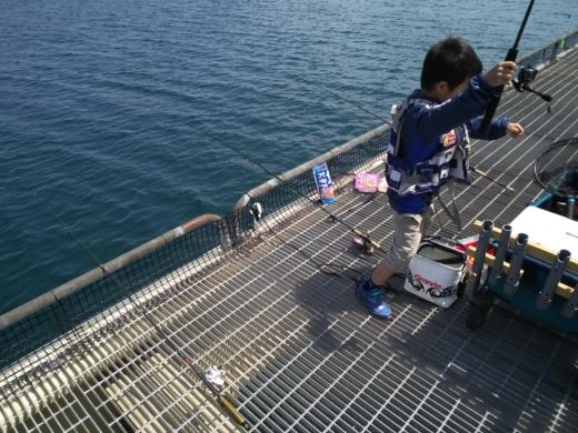 のとじま水族館海づりセンター (9)