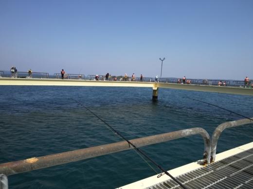 のとじま水族館海づりセンター (11)