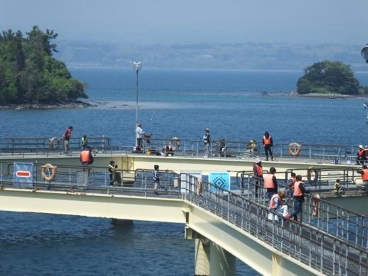 のとじま水族館海づりセンター (1)