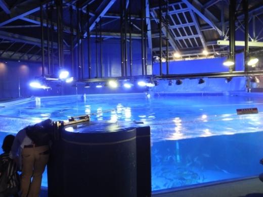 のとじま水族館 (3)