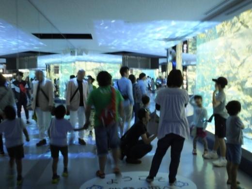 のとじま水族館 (9)