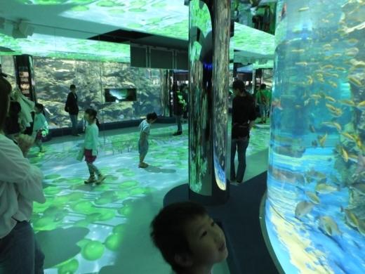 のとじま水族館 (12)