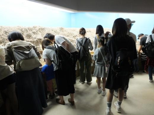 のとじま水族館 (14)