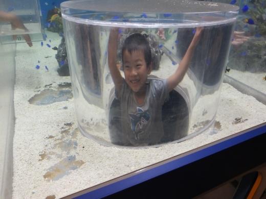 のとじま水族館 (18)