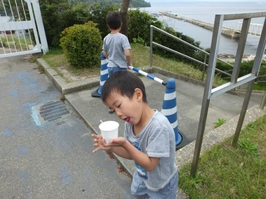 のとじま水族館 (34)