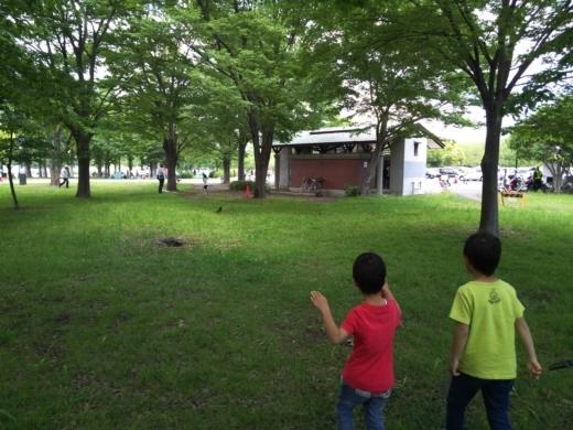 舎人公園で釣り (4)