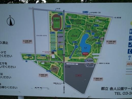 舎人公園で釣り (5)