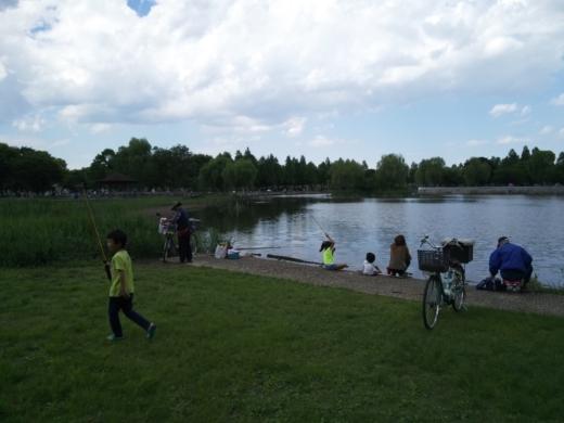 舎人公園で釣り (7)