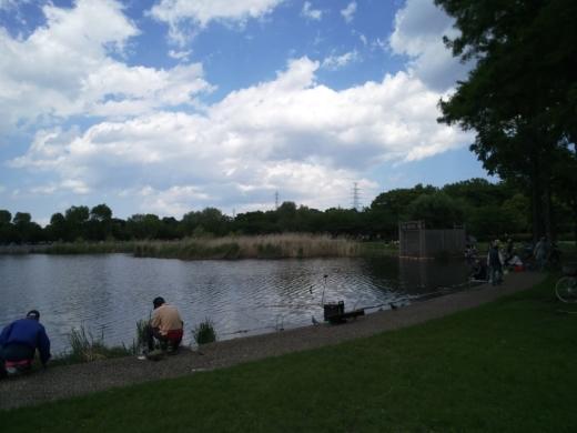 舎人公園で釣り (8)