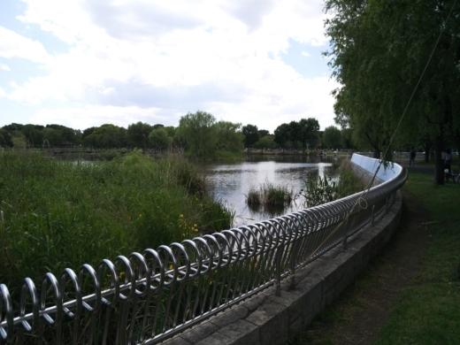 舎人公園で釣り (10)