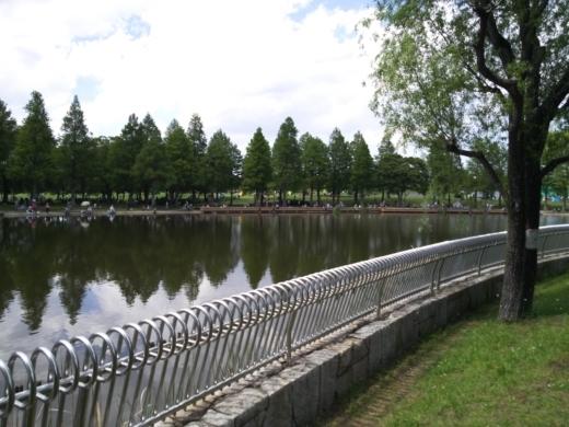 舎人公園で釣り (12)