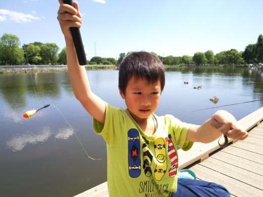 舎人公園で釣り (14)