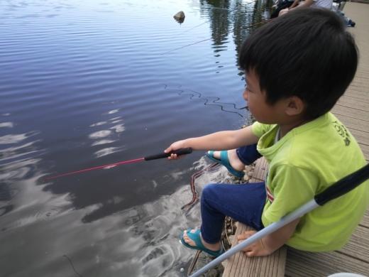 舎人公園で釣り (20)
