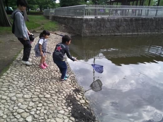 舎人公園で釣り (25)