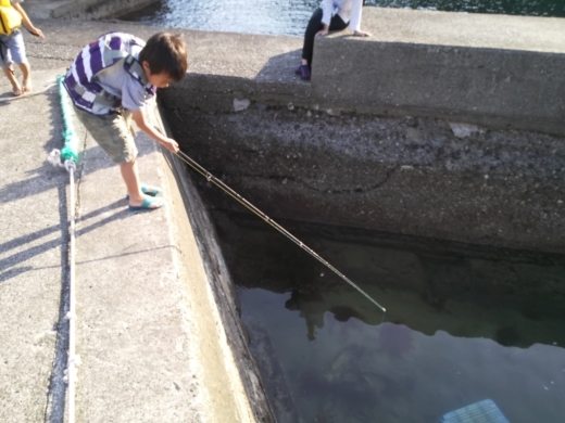 守谷漁港 (2)