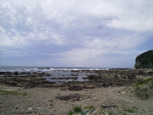 第八回釣り大会城ヶ島 (11)