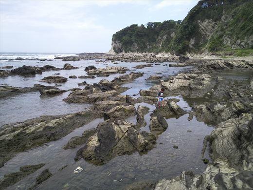 第八回釣り大会城ヶ島 (14)