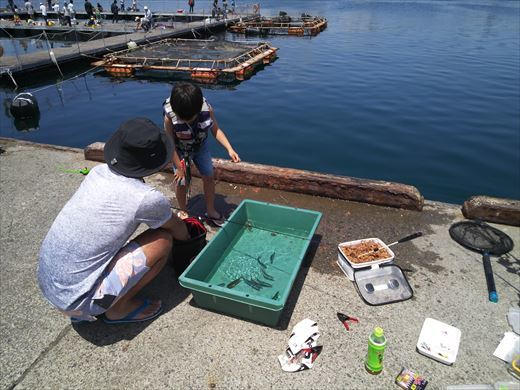 第八回釣り大会城ヶ島 (29)