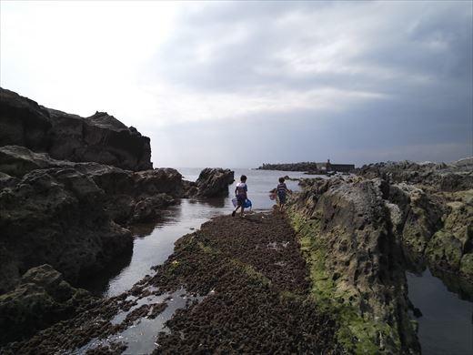 第八回釣り大会城ヶ島 (56)