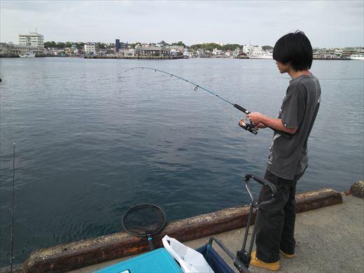 第八回釣り大会城ヶ島 (68)