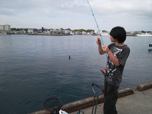 第八回釣り大会城ヶ島 (69)
