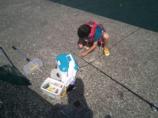 トンビ磯で釣り (35)