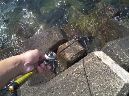 トンビ磯で釣り (39)