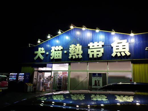 タコ買いました^^ (4)