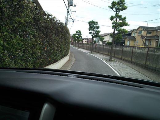 谷塚治水緑地 (1)