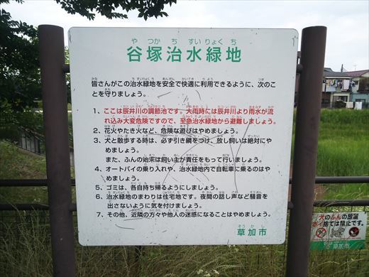 谷塚治水緑地 (15)