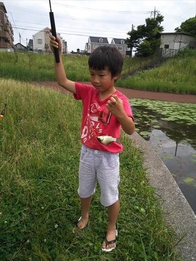 谷塚治水緑地 (9)