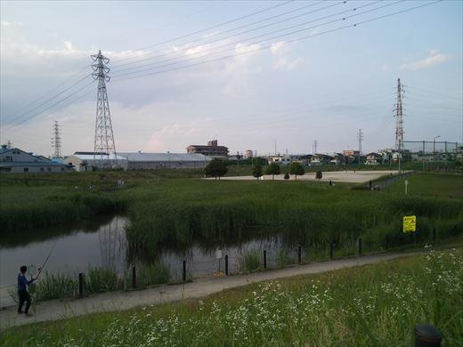 柳島治水緑地 (3)