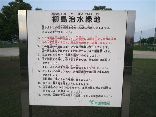 柳島治水緑地 (10)