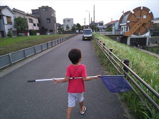 柳島治水緑地 (15)