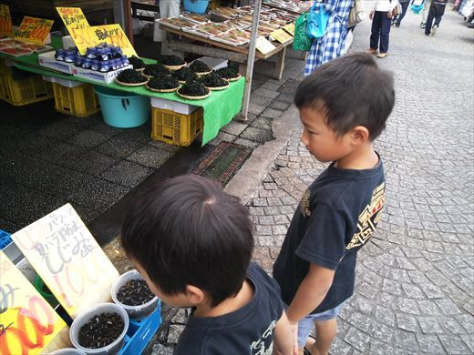 大洗港 (4)
