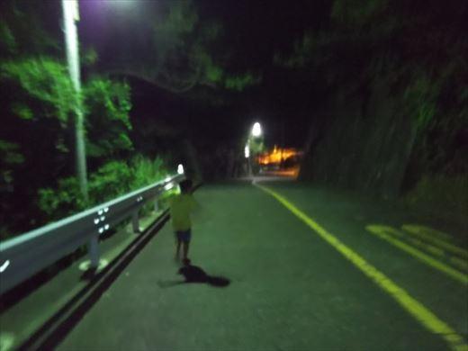 1日目の野伏港夜釣り (1)