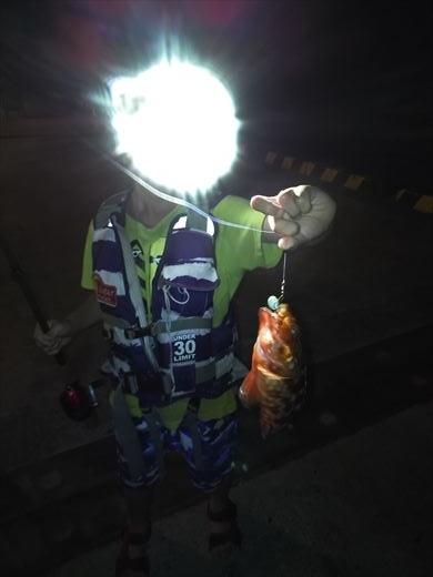 1日目の野伏港夜釣り (6)